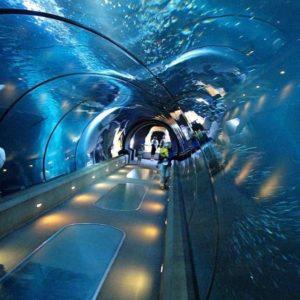 grand-akvarium-hurgada-cena